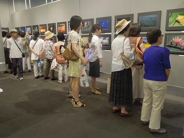 2014女性展 DSCN5823