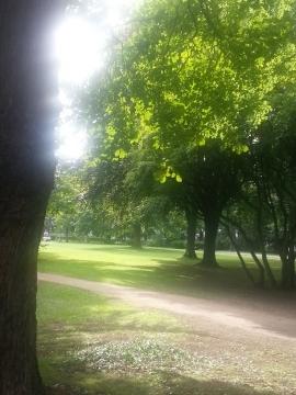 バッドゴーデスバーグ 公園