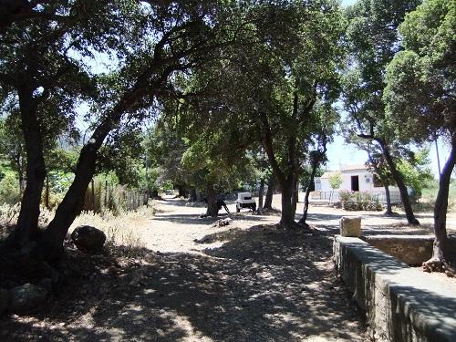 サモトラキ_考古学博物館前
