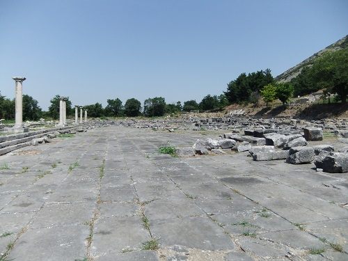 フィリピ遺跡西のエリア (12)