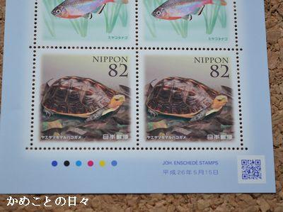 DSC_0054-stamp.jpg