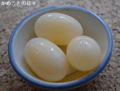DSC_0094-egg.jpg