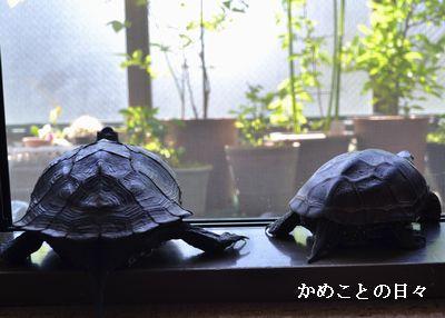 DSC_0118-sukeco_201405182016224c0.jpg