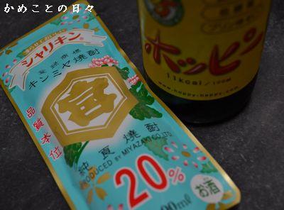 DSC_0123-ho.jpg