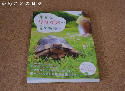DSC_0266-book.jpg
