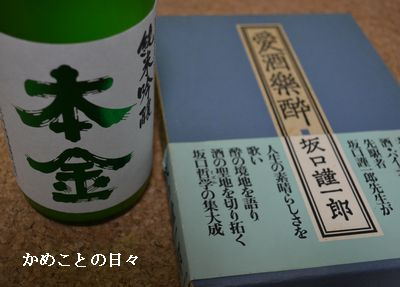 DSC_0411-hon.jpg