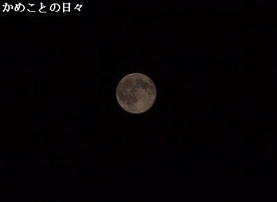 DSC_0572-moon.jpg