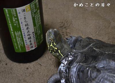 DSC_0605-sake.jpg