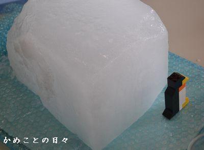 DSC_0743-ice.jpg