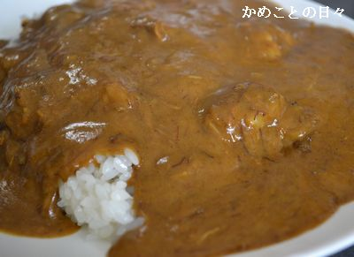 DSC_0789-curry.jpg