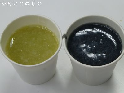 P1100669-sake.jpg