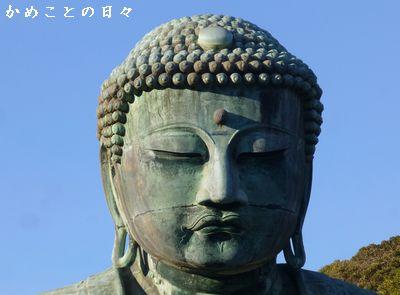 P1110089-dai.jpg