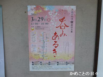 P1110214-poster.jpg