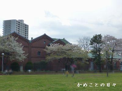 P1110308-saku.jpg