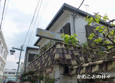 P1110582-cya.jpg