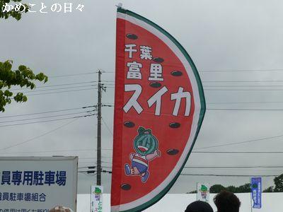 P1120473-sui.jpg