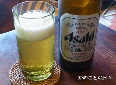 P1120755-beer.jpg