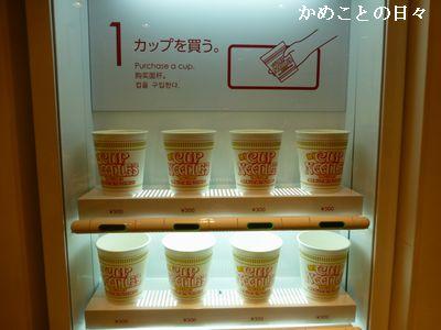 P1120931-cup.jpg