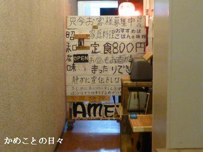 P1130036-amet.jpg