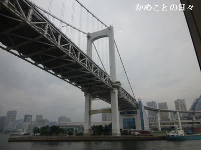 P1130105-rain.jpg