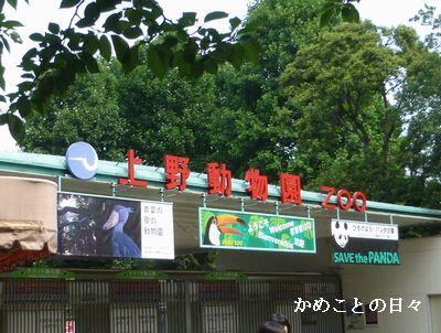 P1130248-zoo.jpg