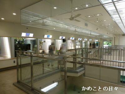 P1130462-ha.jpg