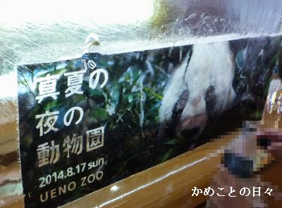 P1130839-zoo.jpg