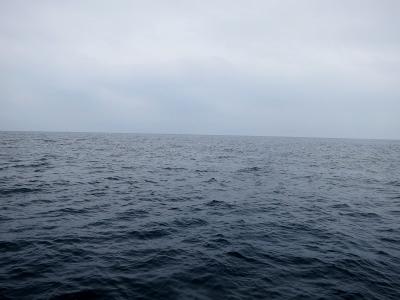 08-26 今日の海