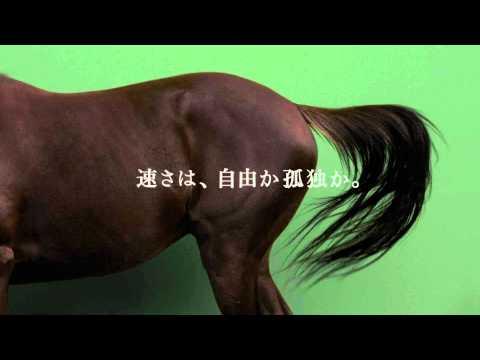 【競馬】初心者「強い馬は最初から先頭走ればいいじゃん」