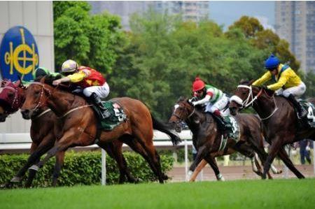 【競馬】エピファネイアが香港で4着に負けたみたいだけど、父のシンボリクリスエスも4歳春は走らなかったのを思い出した