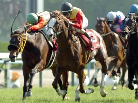 【京都新聞杯】武豊シャドウダンサーの糞騎乗をどう思うか