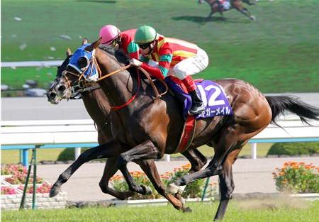 【ジャガーメイル】天皇賞(春)の勝ち馬がまた種牡馬になれない件【引退】
