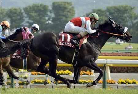 【競馬】なぜ青葉賞馬はダービー勝てないのか?