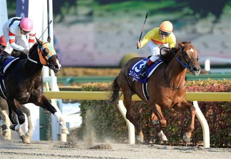 【前二走】とも二桁着順の馬がなんで激走するの?