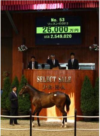 【金子真人】がディープ産駒の牡馬を1億8000万円で落札