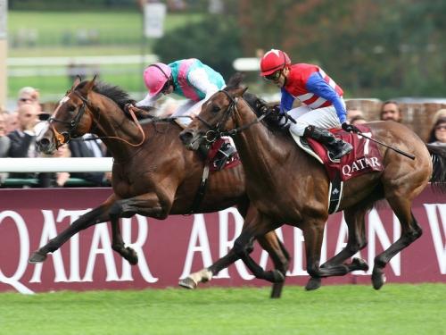 【ナカヤマフェスタ】の馬主「凱旋門挑戦は1億かかる」