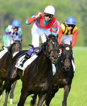 【競馬】過去18年のダービー馬でレース