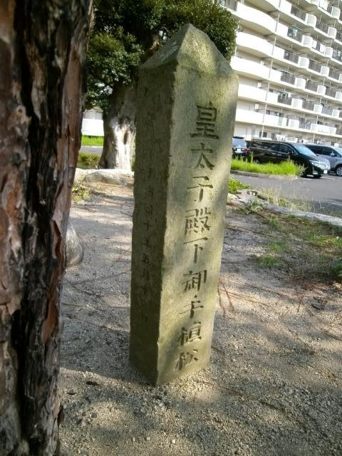 舞鶴水交社 (7)