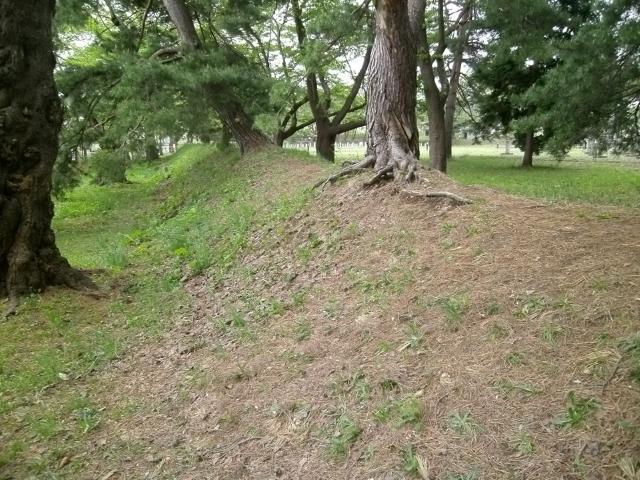 青森陸軍墓地その1 (8)