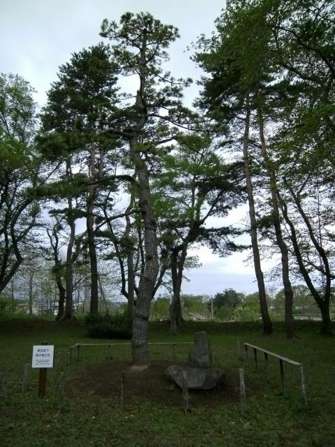 青森陸軍墓地その3 (15)