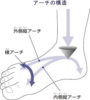 「足 アーチ」の画像検索結果