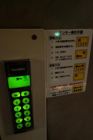 akebonoaomorii0027.jpg