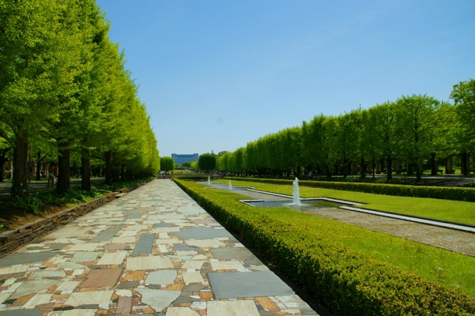 DSC04882昭和記念公園