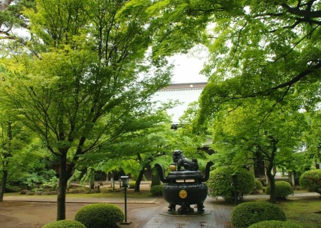 DSC00496豪徳寺