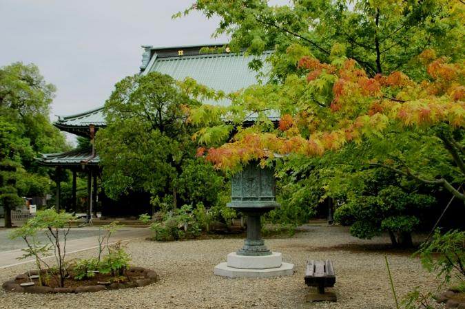 DSC00491豪徳寺