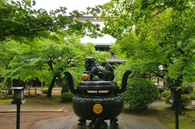 DSC00463豪徳寺