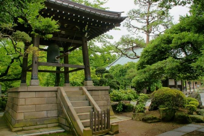 DSC00509豪徳寺