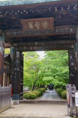 DSC00501豪徳寺