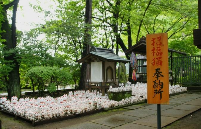 DSC00471豪徳寺