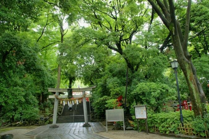 DSC00534豪徳寺